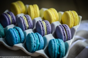 teal, purple and yellow macarons on white porcelain egg case